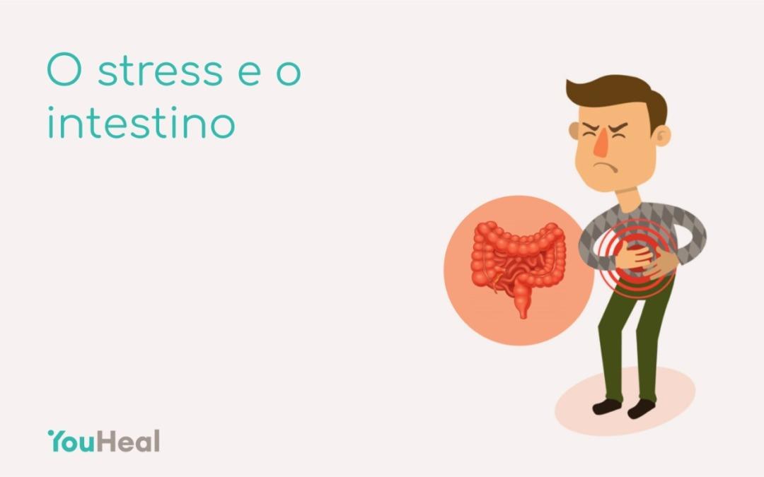 O stress e o intestino